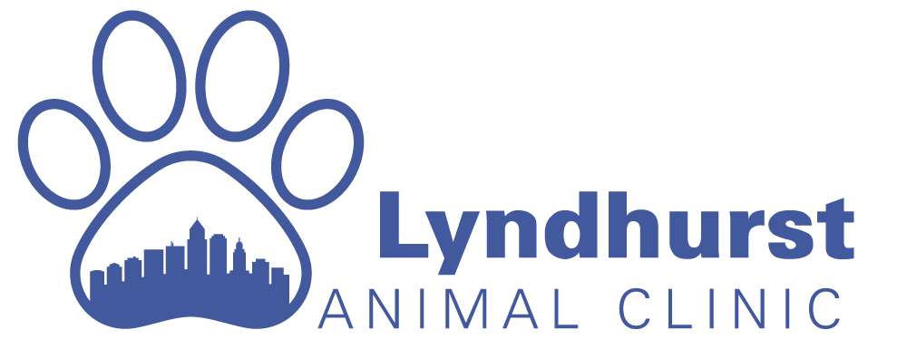 Lyndhurst Animal Clinic